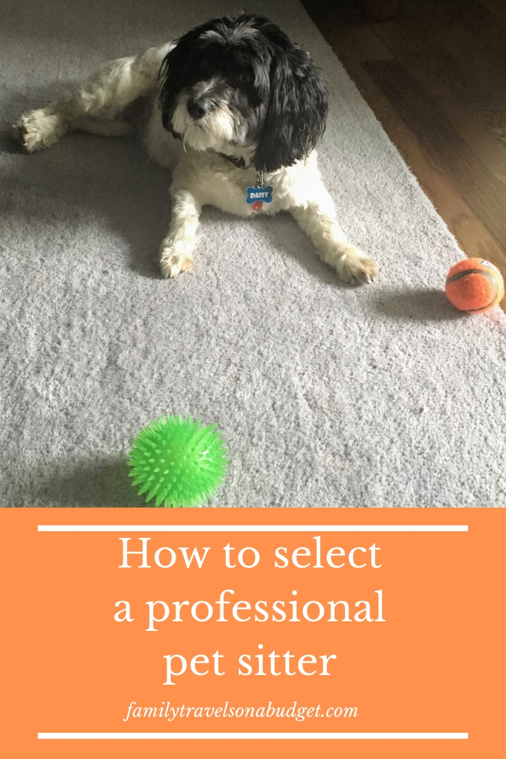 Finding a professional pet sitter you can trust to provide in home pet care is a great comfort for pet lovers. Learn how to select a dog sitter, what factors affect pet sitting rates and what pet services you need. Checklist included to make planning easy.