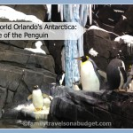 Sea World's Antarctica: Empire of the Penguin Review