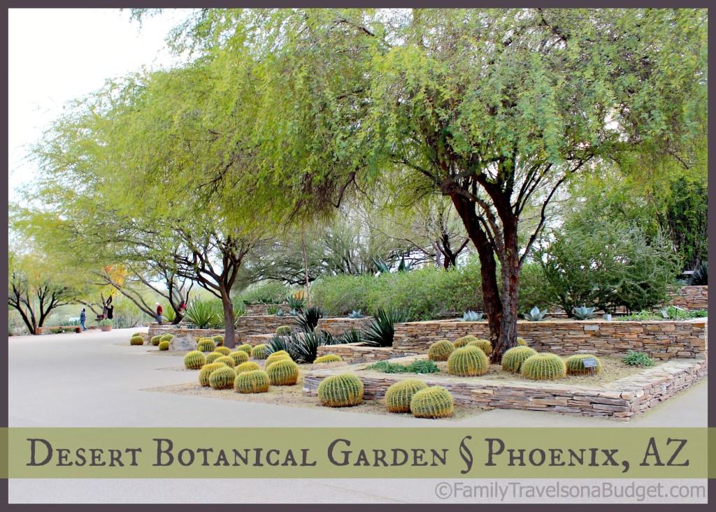 Desert Botanical Garden Title Pic