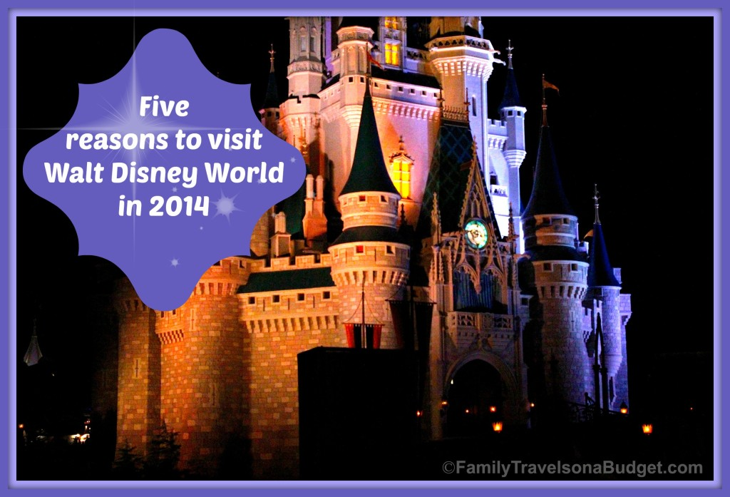 5 reasons to visit #WDW