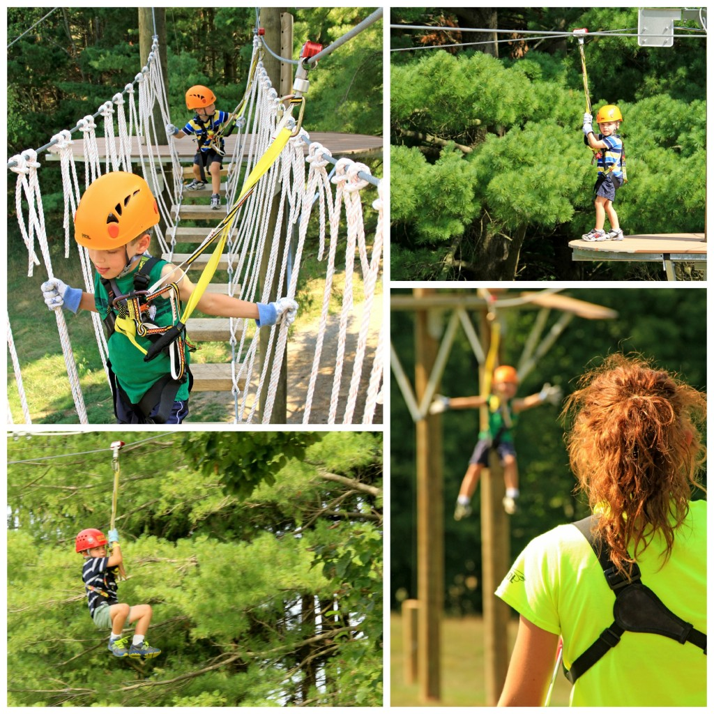 Dragonfly at Hocking Hills Canopy Tours