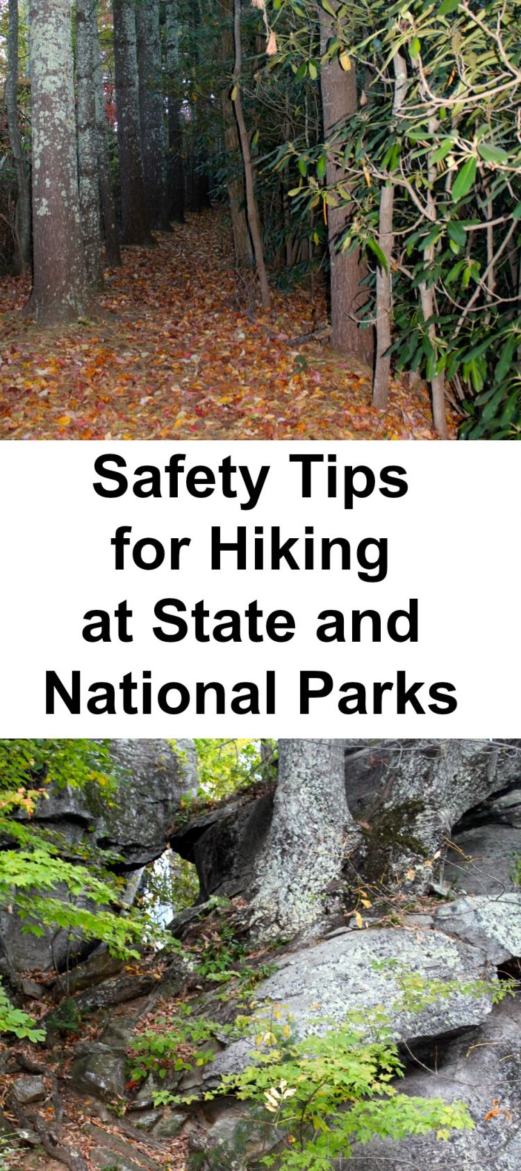 Essential safety tips for hiking at state and national parks. Especially for beginners but a good reminder for all, includes best gear recommendations and some great day trip hiking trails across the United States. #gooutside #adventurer #nationalparks #hikingsafety #hikingsafetytips #hikingtipsforbeginners #beginnerhikingtips #firsttimehikingtips #hikinggear via @karendawkins