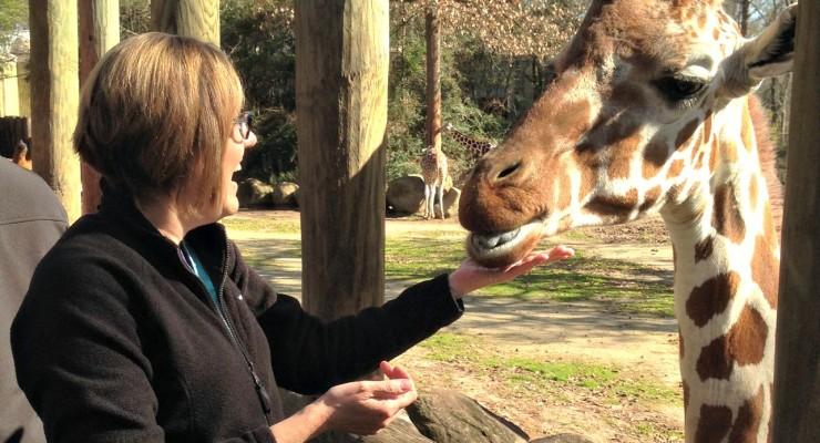 Riverbanks Zoo in Columbia, SC