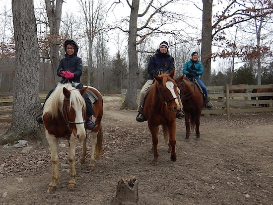 Shenandoah Horseback Riding