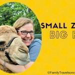 Small zoos, Big fun