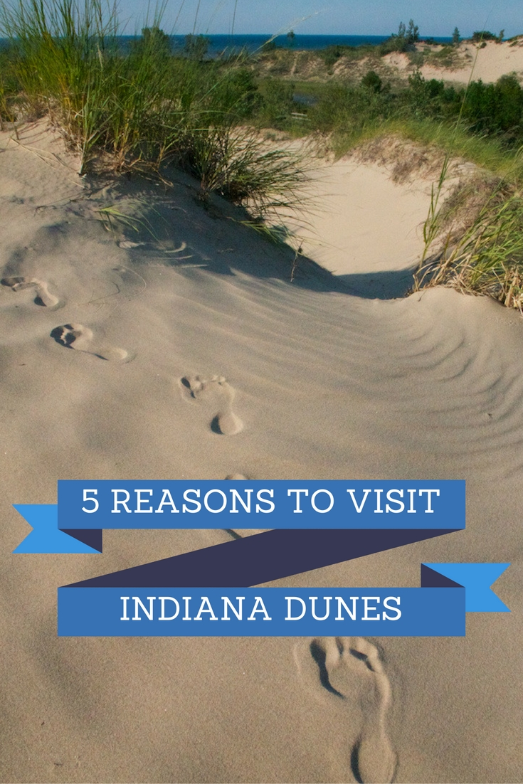 5 Reasons To Visit Indiana Dunes This Fall Family