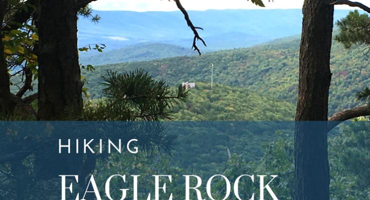 Hiking the Tuscarora Trail to Eagle Rock Overlook