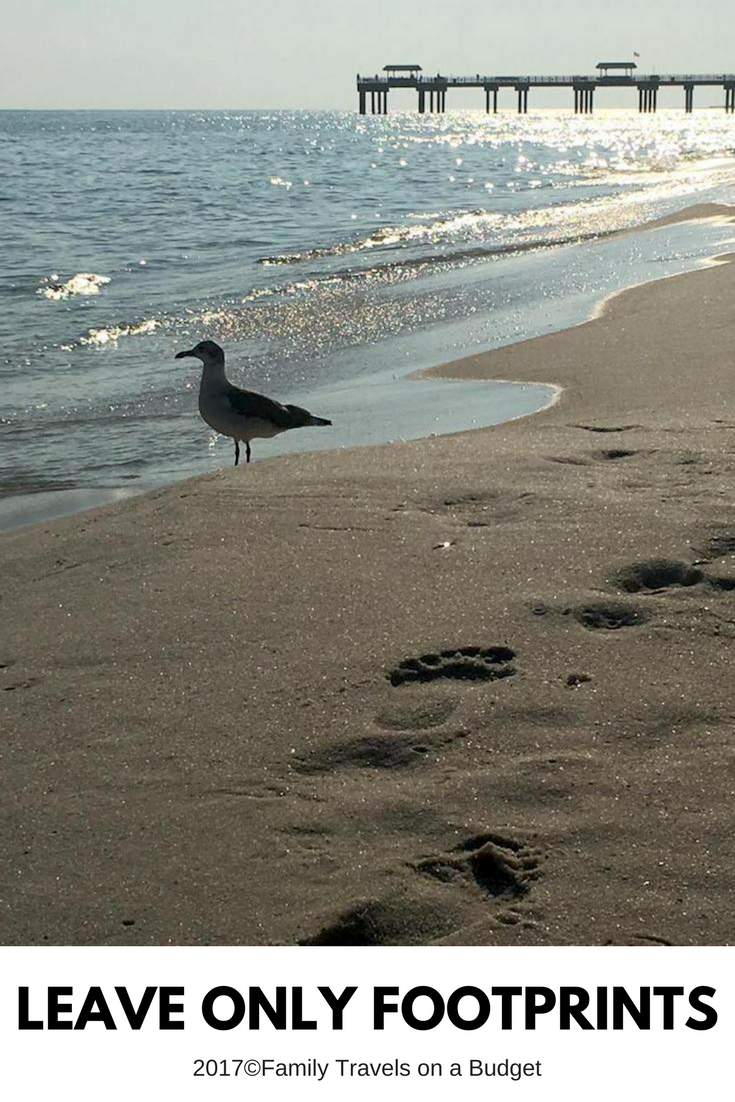 Leave Only Footprints: It's not a motto, it's a mission.