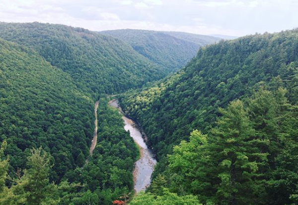 Pine Creek Gorge offers adventure vacations like hiking, biking, rustic camping and horseback riding.