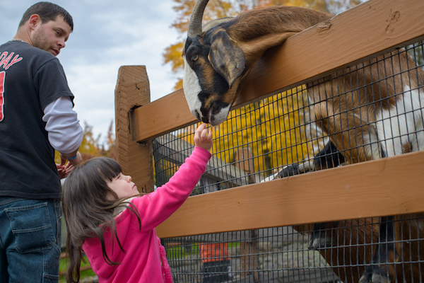 Lehigh Valley Zoo, photo by Discover Lehigh Valley