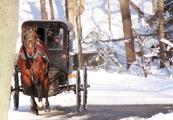 Horse and buggy rides are a holiday tradition in historic Lancaster