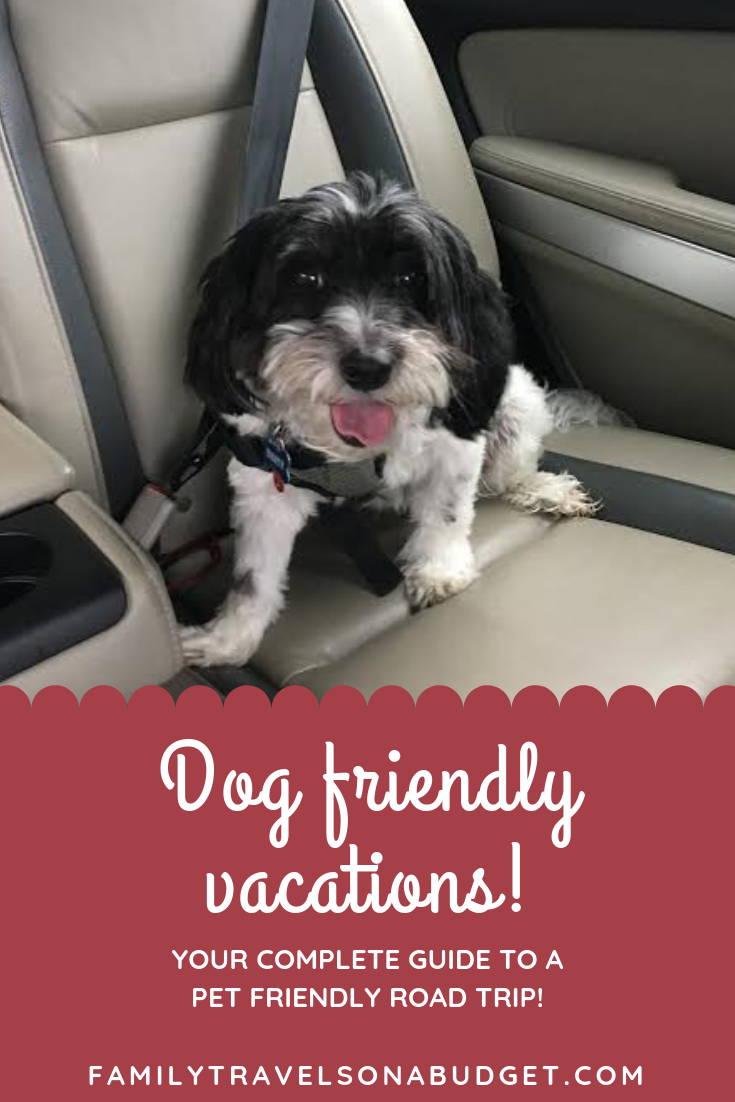 A dog friendly road trip starts with just a little planning. Make sure you have everything you need for your pet, includes travel tips, packing list and more. #pettravel #pettravelessentials #pettravelhacks #pettravelroadtrips #petfriendlytravel #dogtravel via @karendawkins
