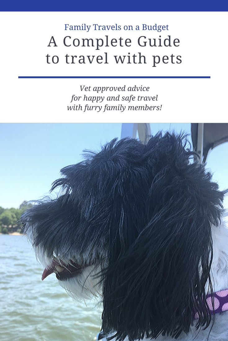 A dog friendly road trip starts with just a little planning. Make sure you have everything you need for your pet, includes travel tips, packing list and more. #pettravel #pettravelessentials #pettravelhacks #pettravelroadtrips #petfriendlytravel #dogtravel