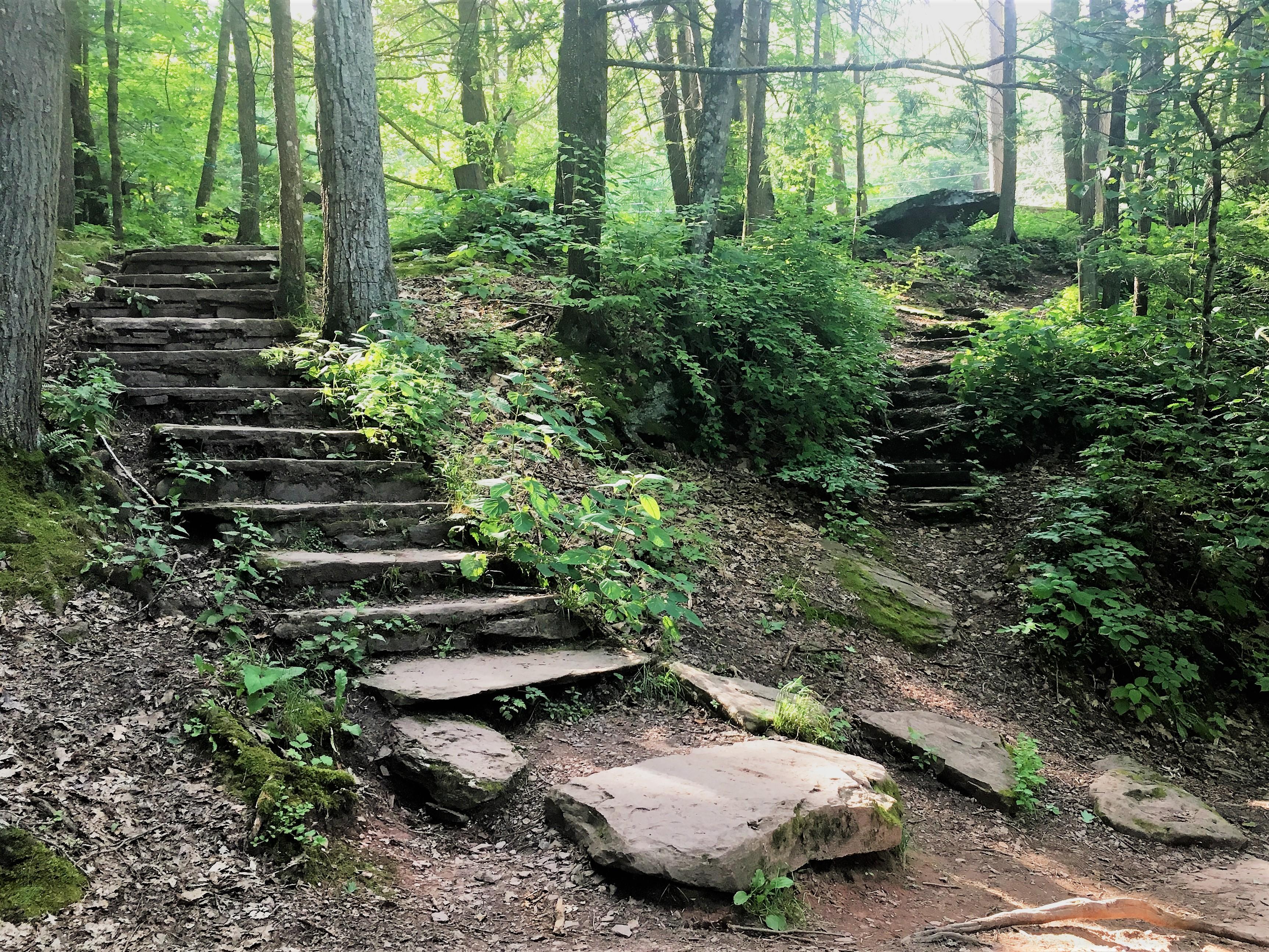 Staircase along tge trail at Ricketts Glen