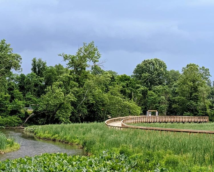 Neabsco Creek Boardwalk in Prince William County, VA
