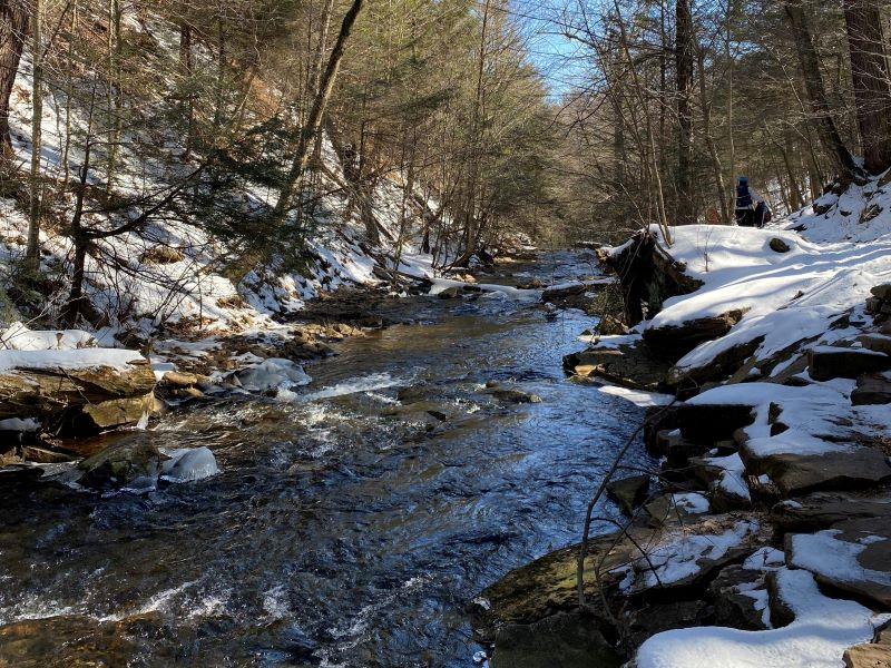 Ricketts Glen Falls Trail in winter for ice hiking