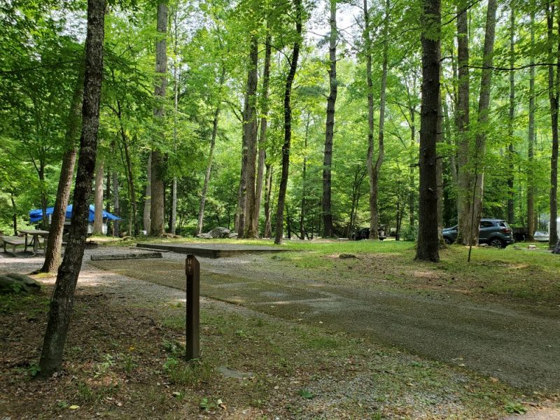Elkmont Campground in Tennessee makes a great weekend getaway for families, Photo Credit: John Tillison