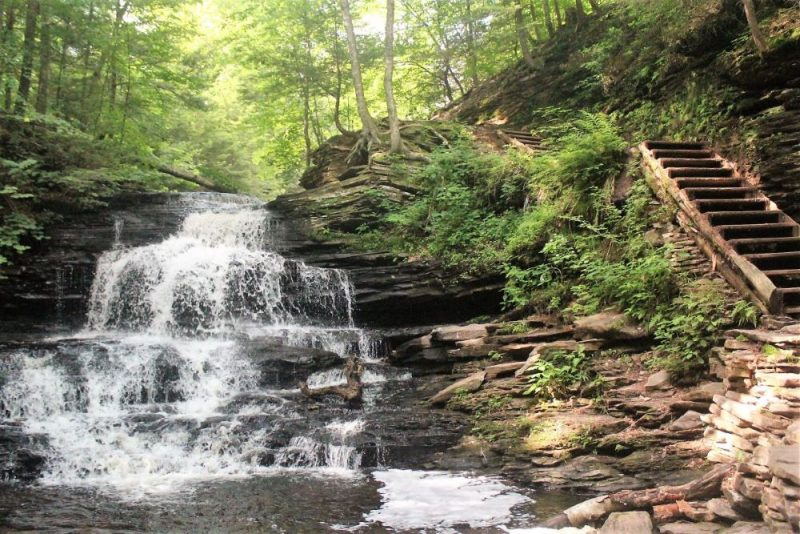 Family campgrounds in Pennsylvania are popular, but Ricketts Glen is the best.