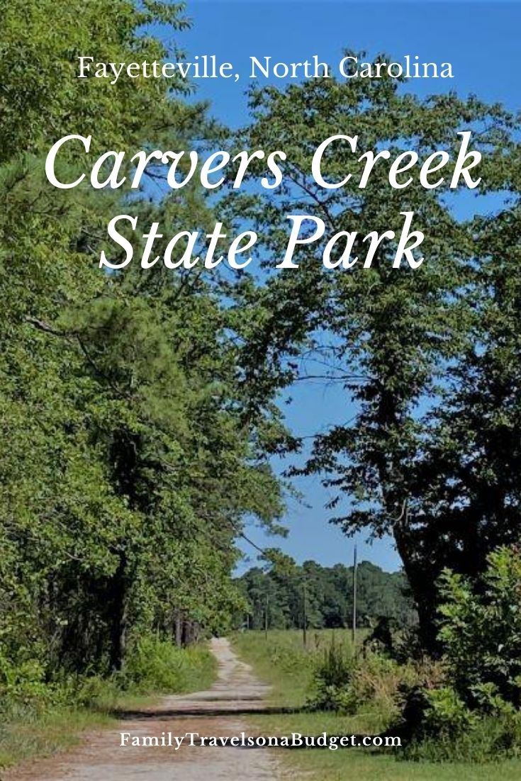 Carvers Creek State Park preserves history while offering sandy trails for people to enjoy. There's a pine forest, mill pond, historic Rockefeller home and more to discover at this new family friendly state park in Fayetteville, NC. Dogs on leashes are welcome too.